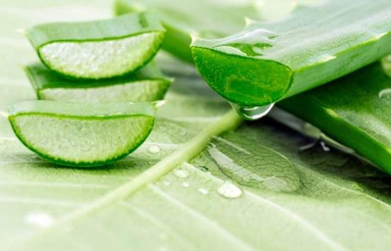 Aloe Vera Gel, Aloe Vera gel mask, aloe vera for acne, acne treatment